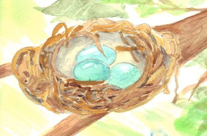 Robins egg nest